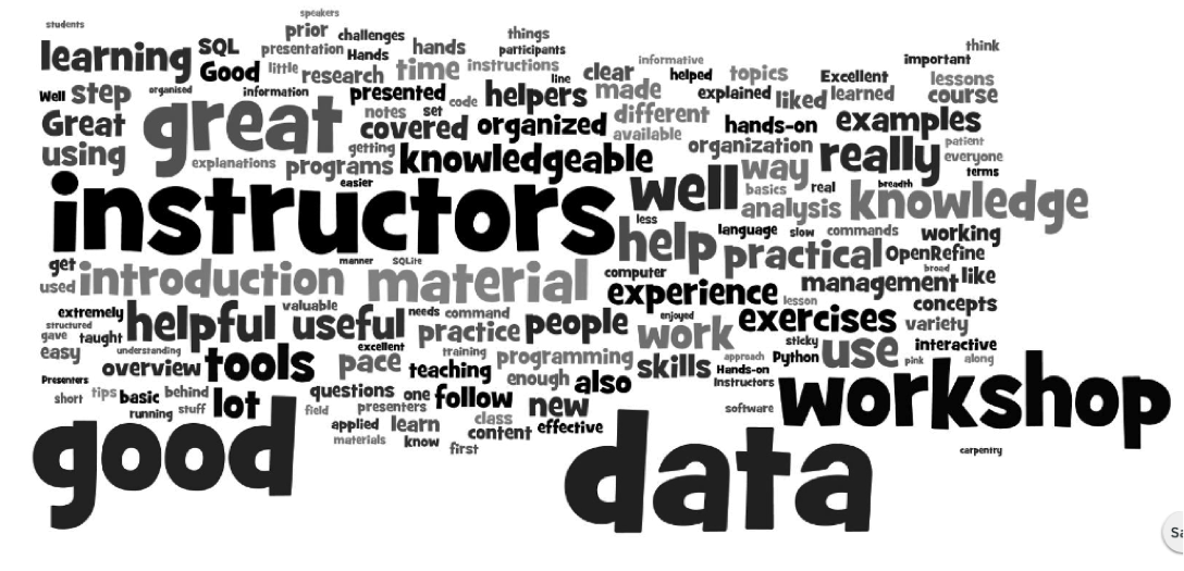post-workshop survey word cloud